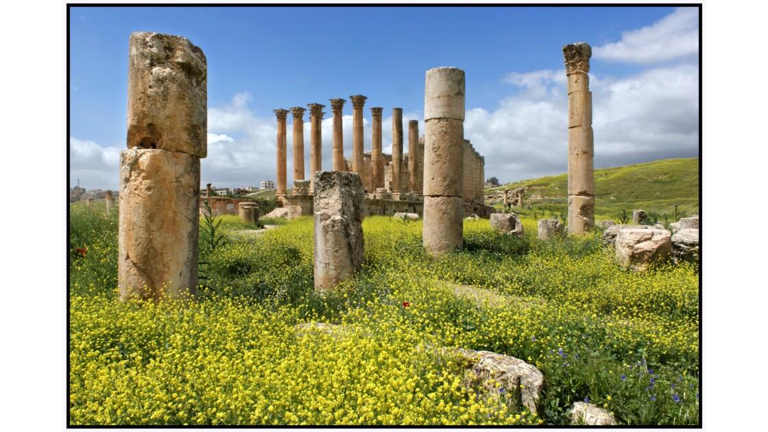 Gerasa - Temple d'Artemis
