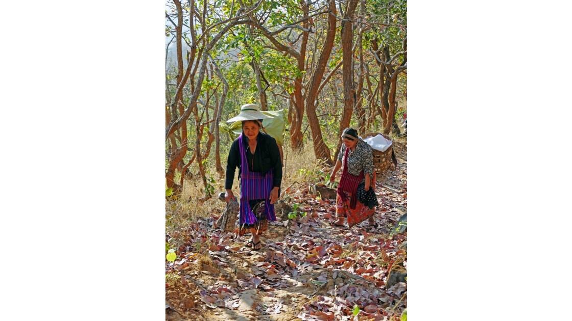 Myanmar Entre les villages de Tale-U et d'Inne de pêche du lac d'Inlé 1