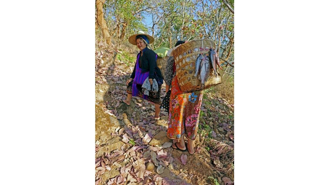 Myanmar Entre les villages de Tale-U et d'Inne de pêche du lac d'Inlé 2