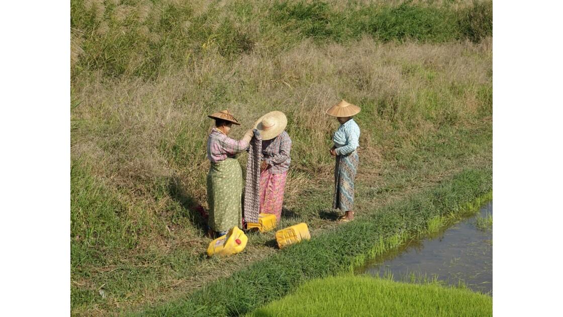 Myanmar Entre les villages de Tale-U et d'Inne 5