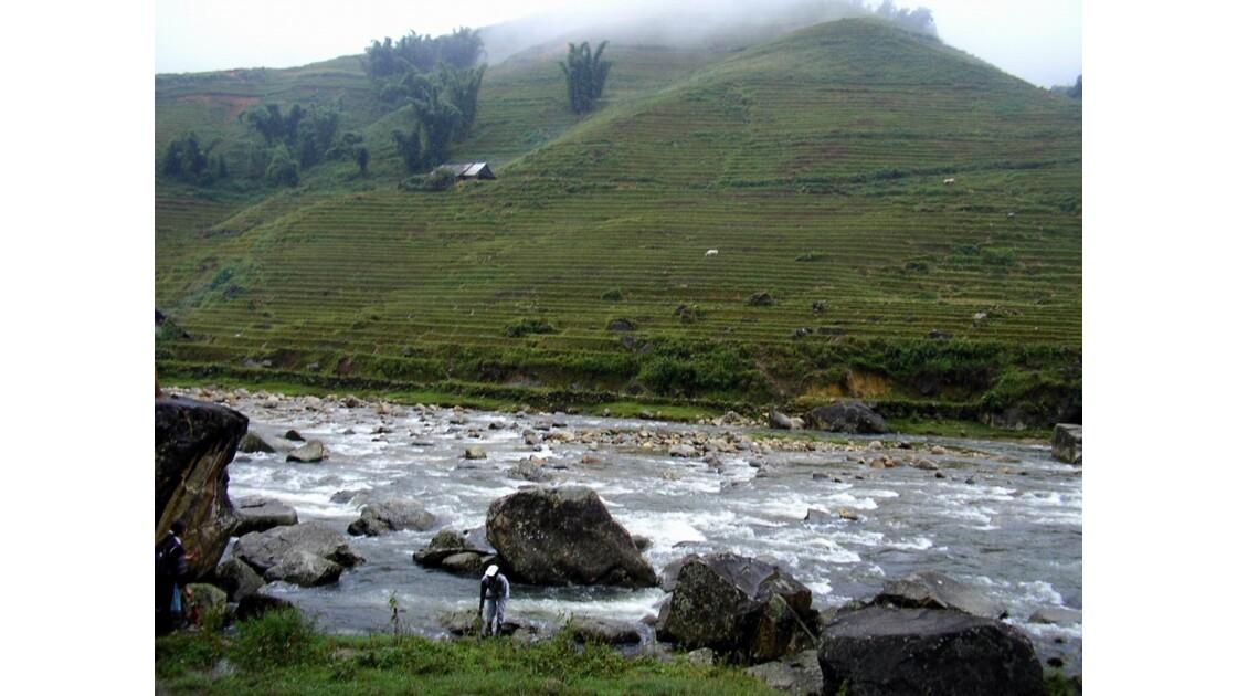 Rizières et rivière