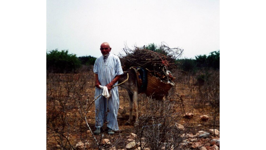 Le vieil homme et l'âne