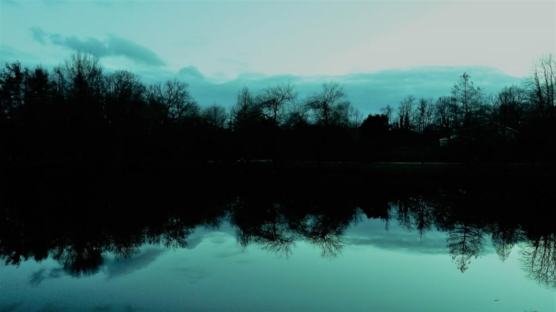 Figé de bleu-rêve