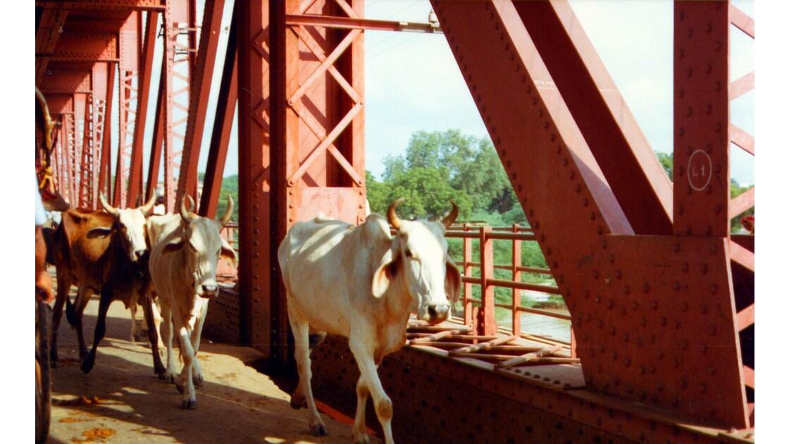 Le pont d'Agra