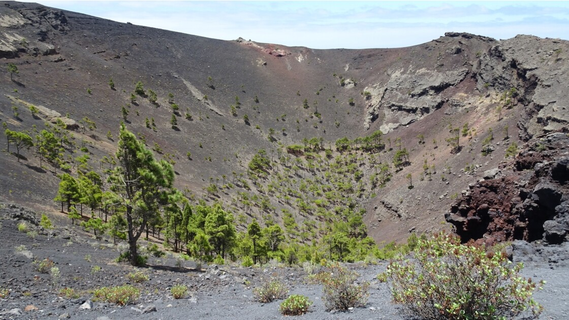 La Palma Cratère du Volcan Santonio 4