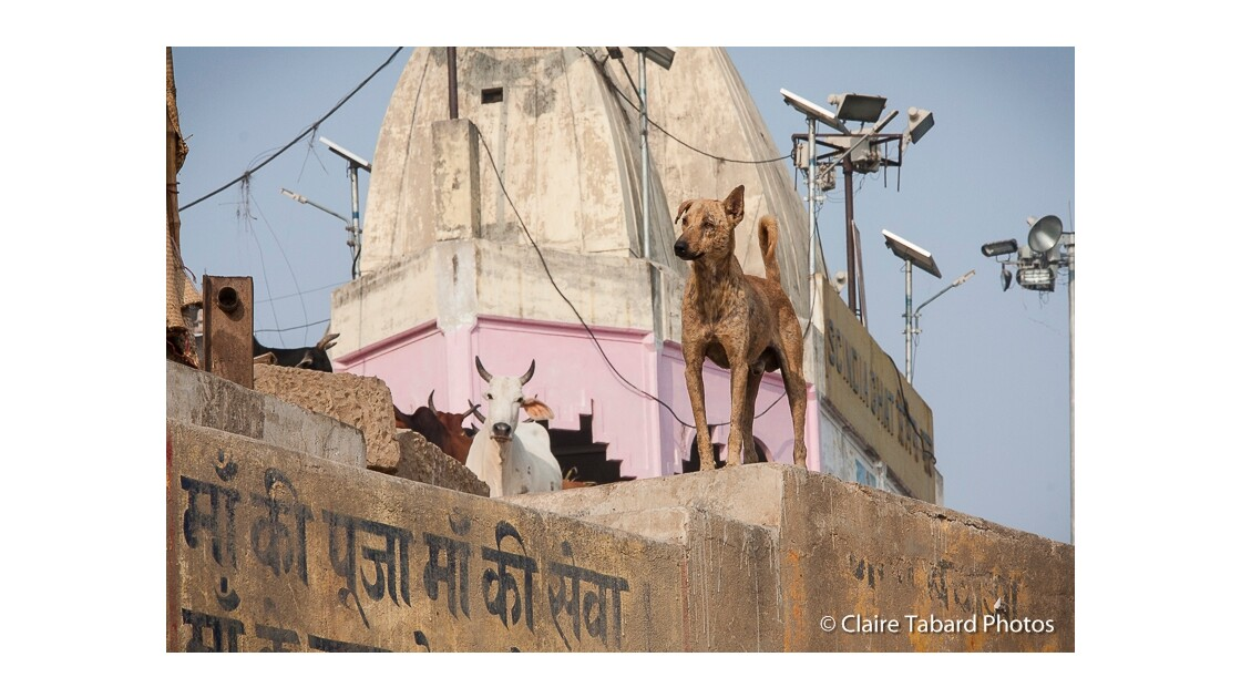Sur les Ghats à Varanasi
