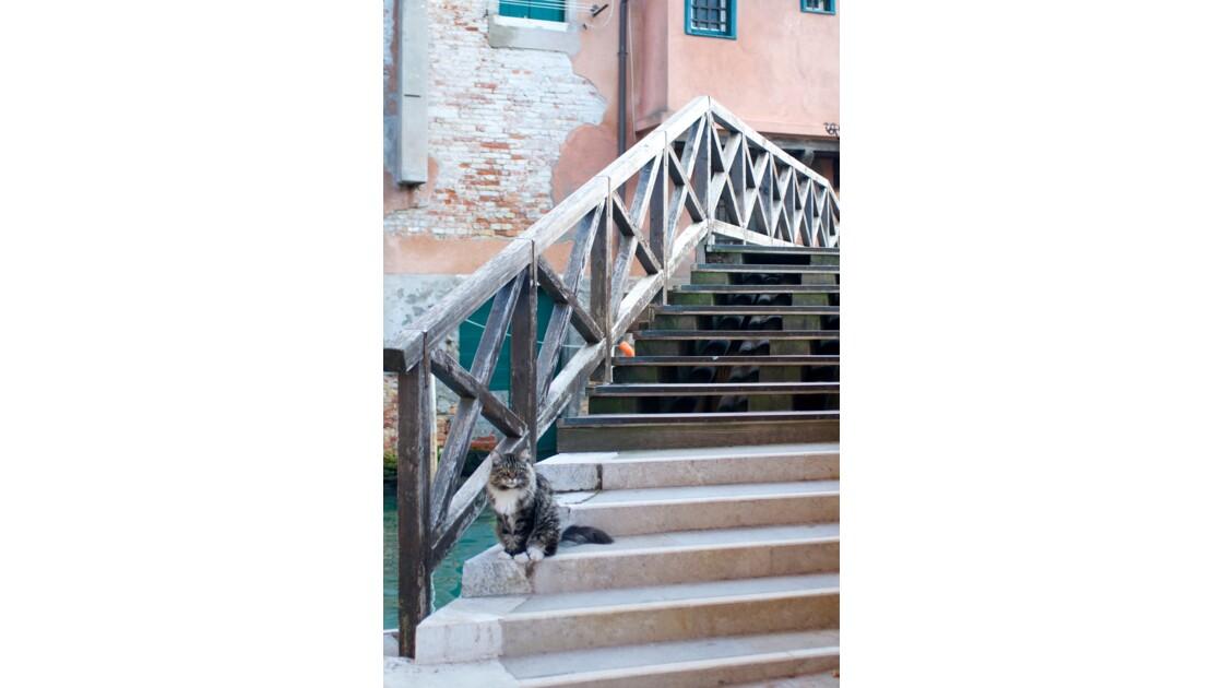 Impressions de Venise