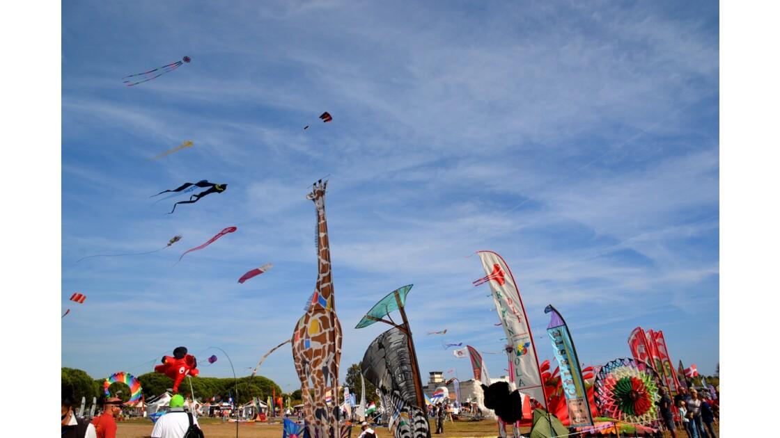 Festival de l'air Fréjus