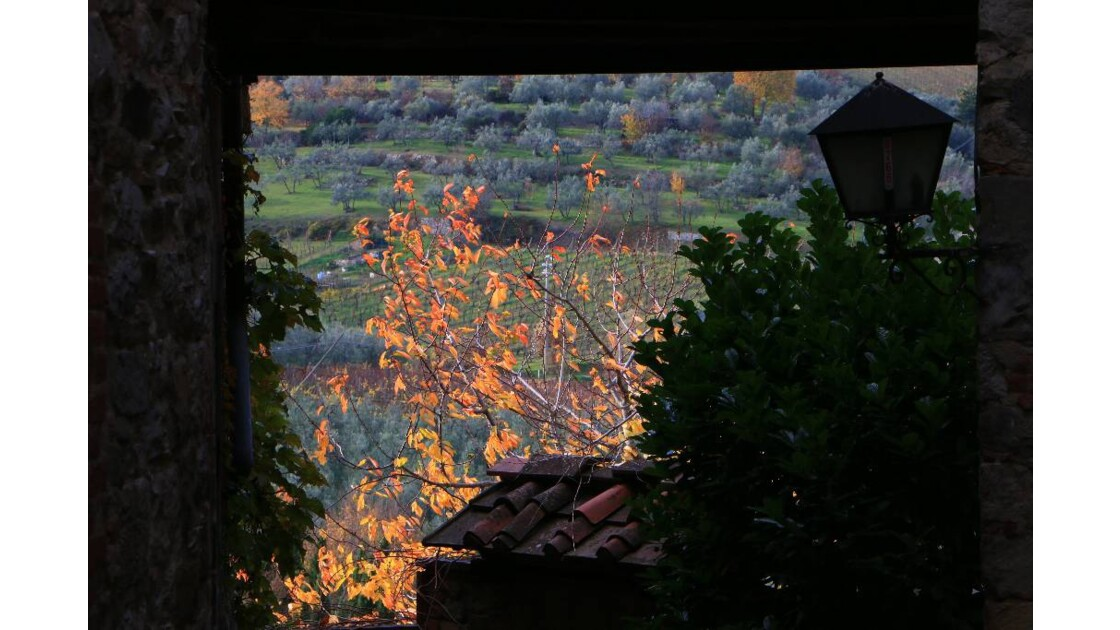 Cadre rural