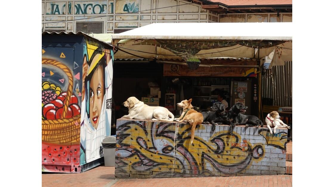Colombie Bogota La Candelaria En attendant des maîtres