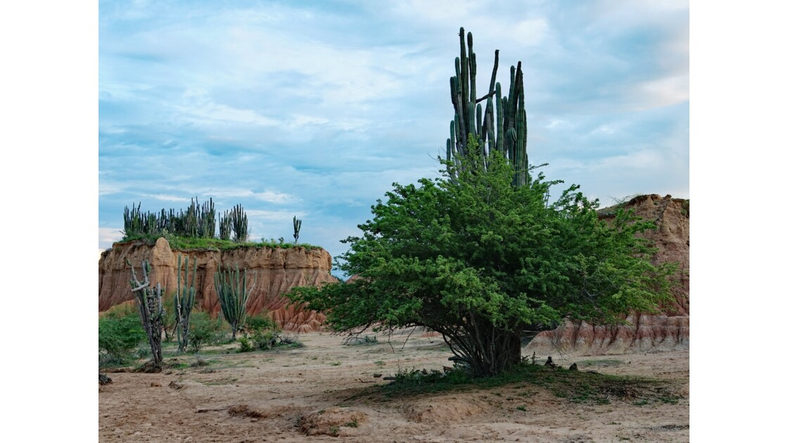 Colombie Soirée au Desertio de la Tatacoa 5