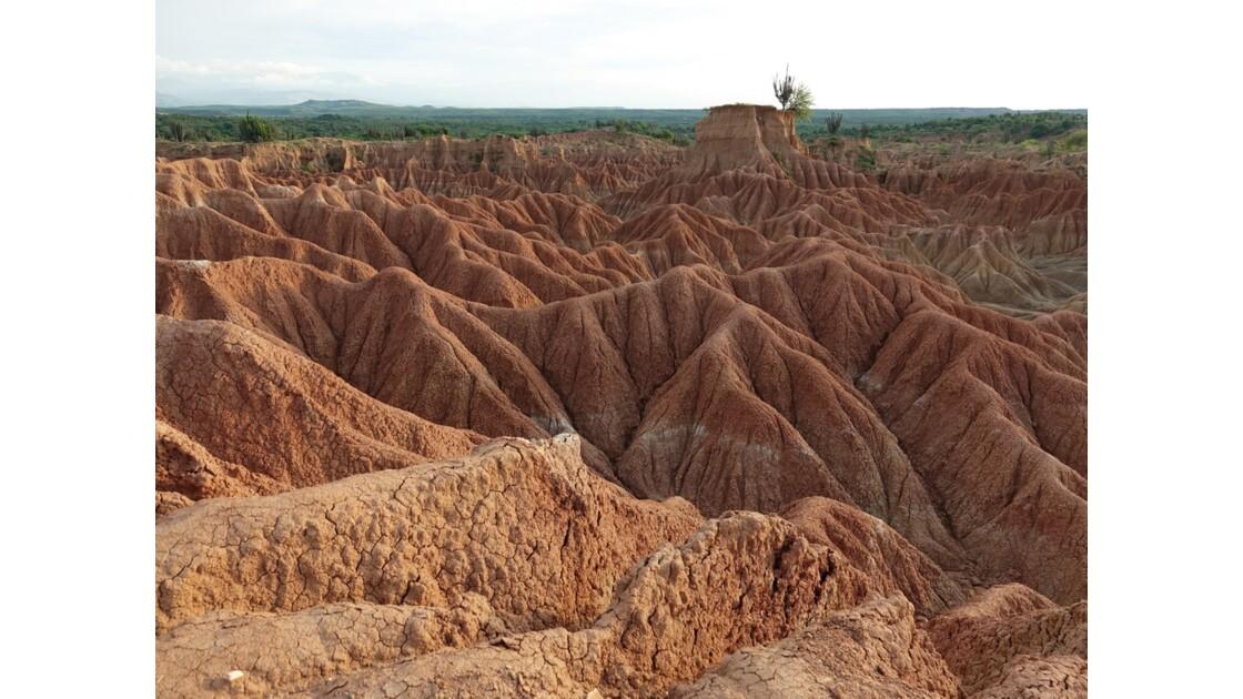 Colombie Desertio de la Tatacoa 7