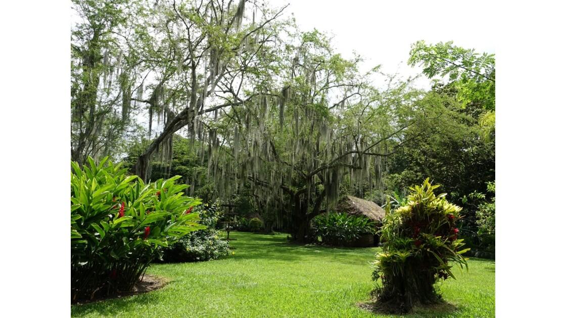 Colombie Hacienda Piedechinche 14