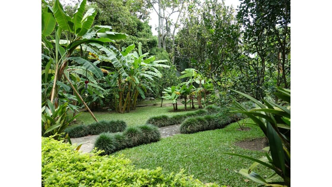 Colombie Hacienda Piedechinche 15