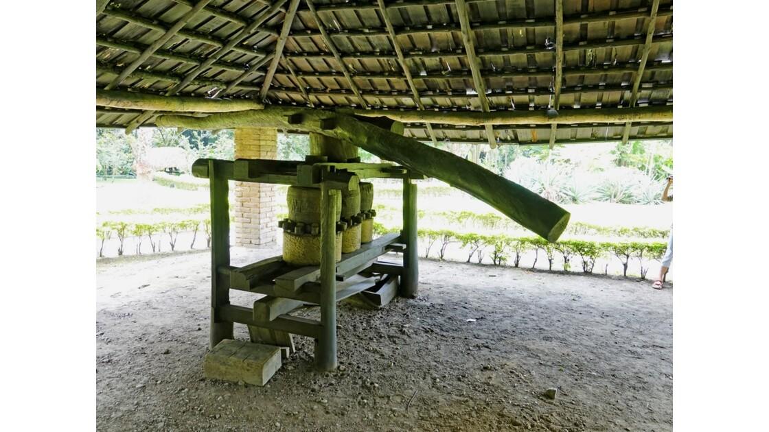 Colombie Hacienda Piedechinche Trapiche Narino
