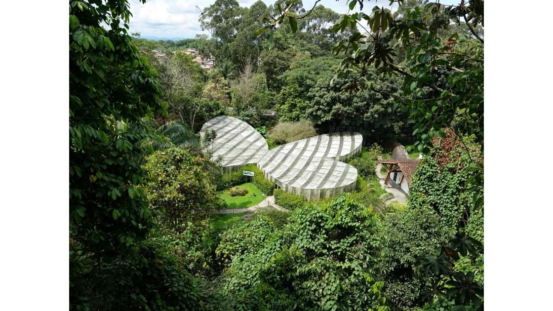 Colombie Jardin Botanico Serre aux papillons 1