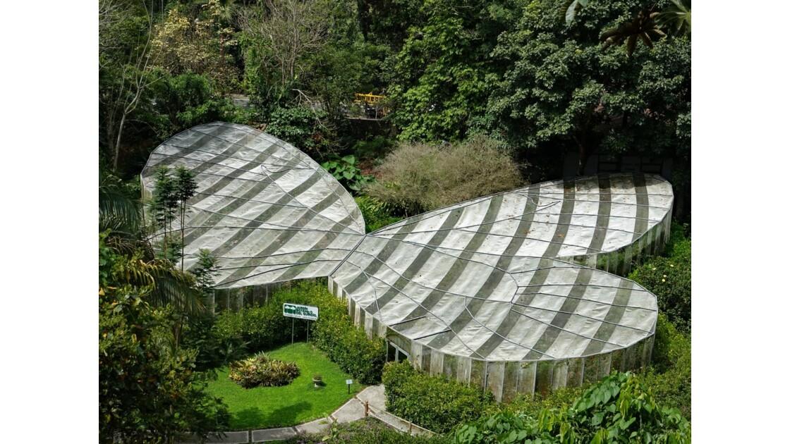 Colombie Jardin Botanico Serre aux papillons 2