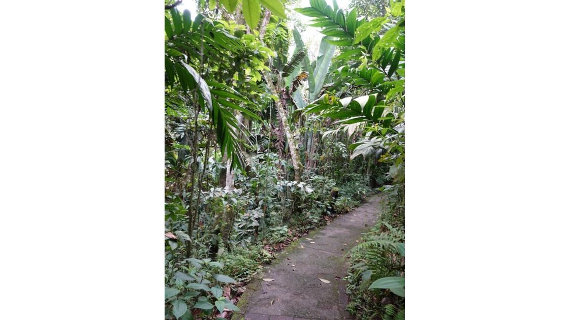 Colombie Jardin Botanico del Quindio 1