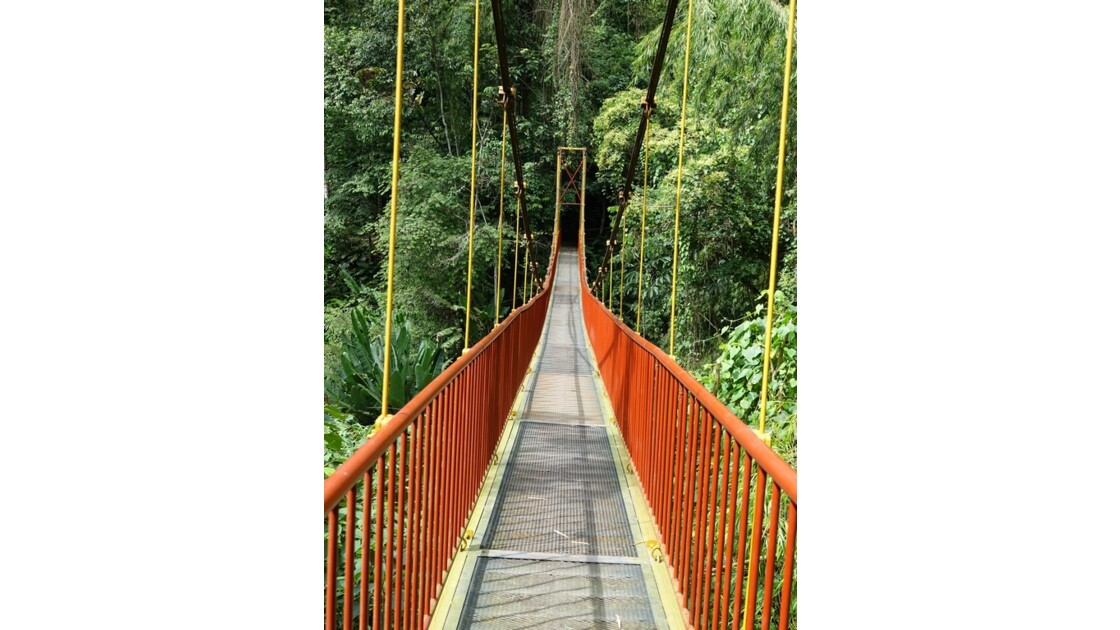 Colombie Jardin Botanico del Quindio 2