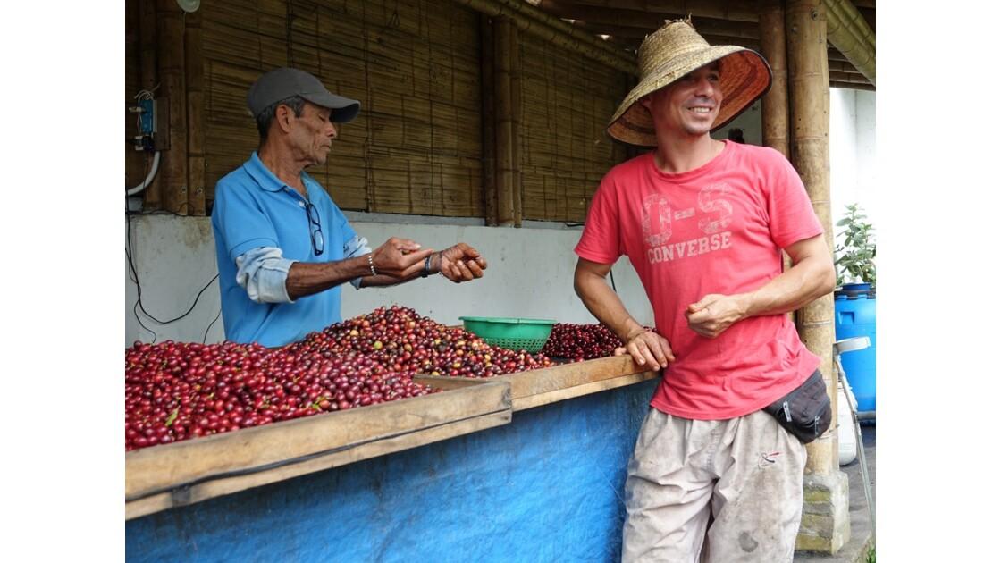 Colombie vallée de Corcora Tri du café 5