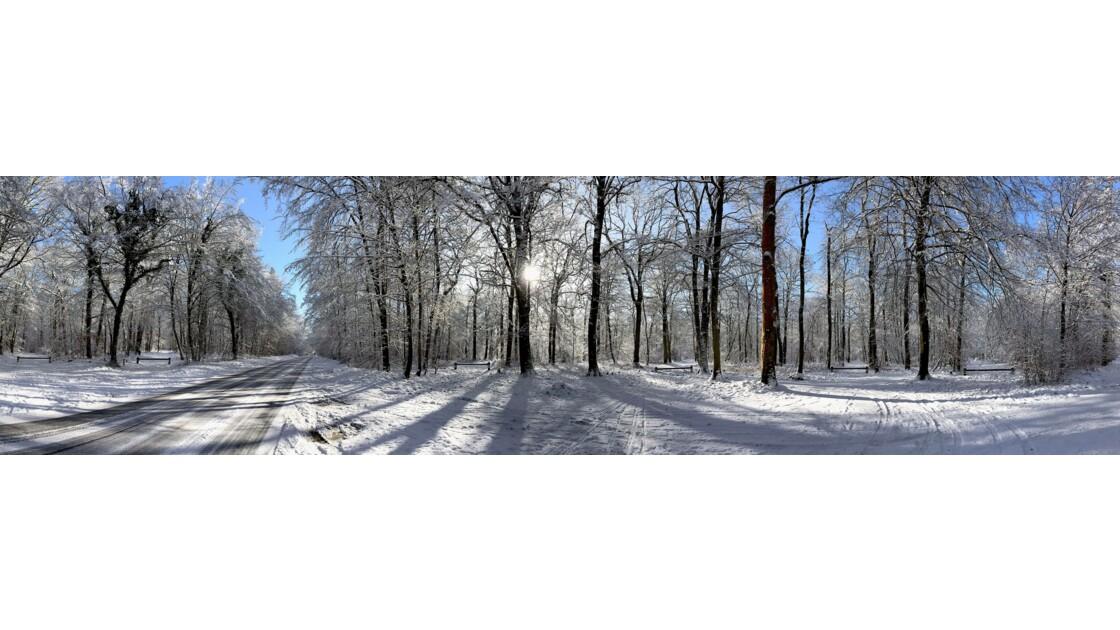 Fontainebleau enneigé