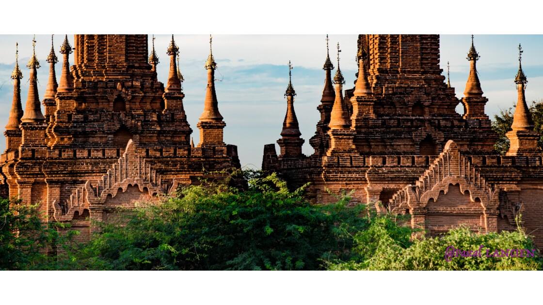 Planète Birmane-Bagan