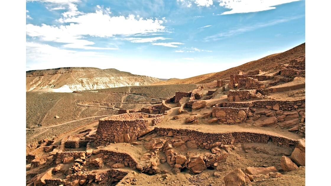 Paysages de l'Altiplano Chilien