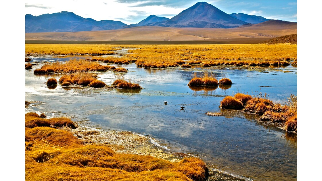 Paysages de l'Altiplano Chilien