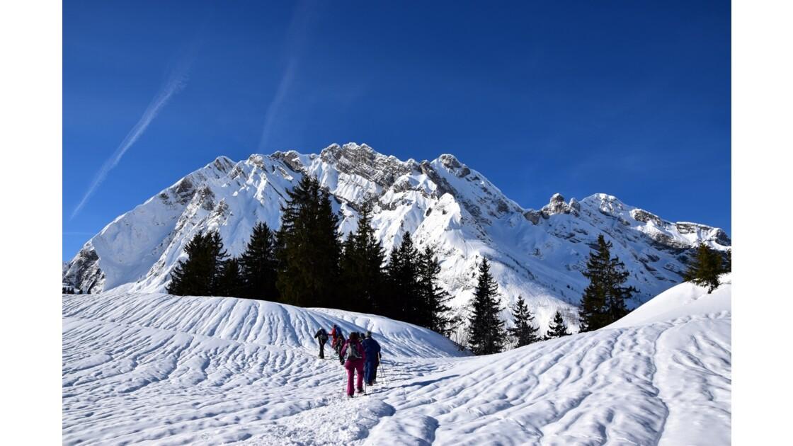 Randonnée raquettes au Col des Aravis