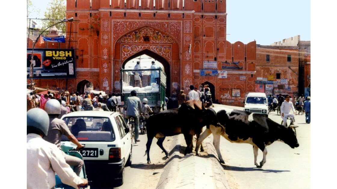 Les rues de Jaïpur