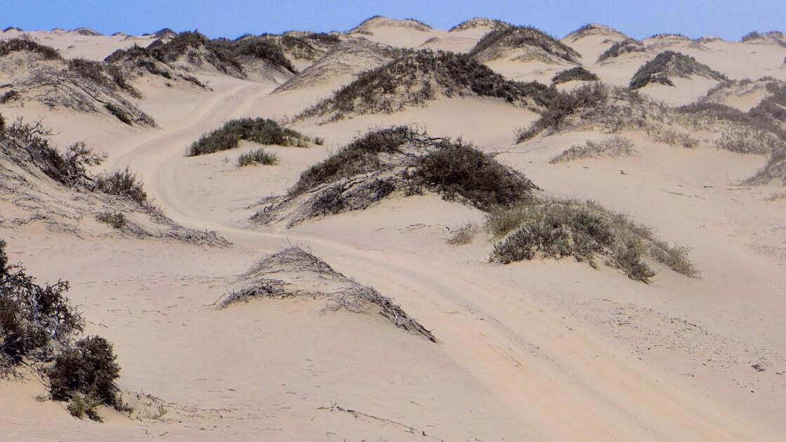 4x4 dans le Namib