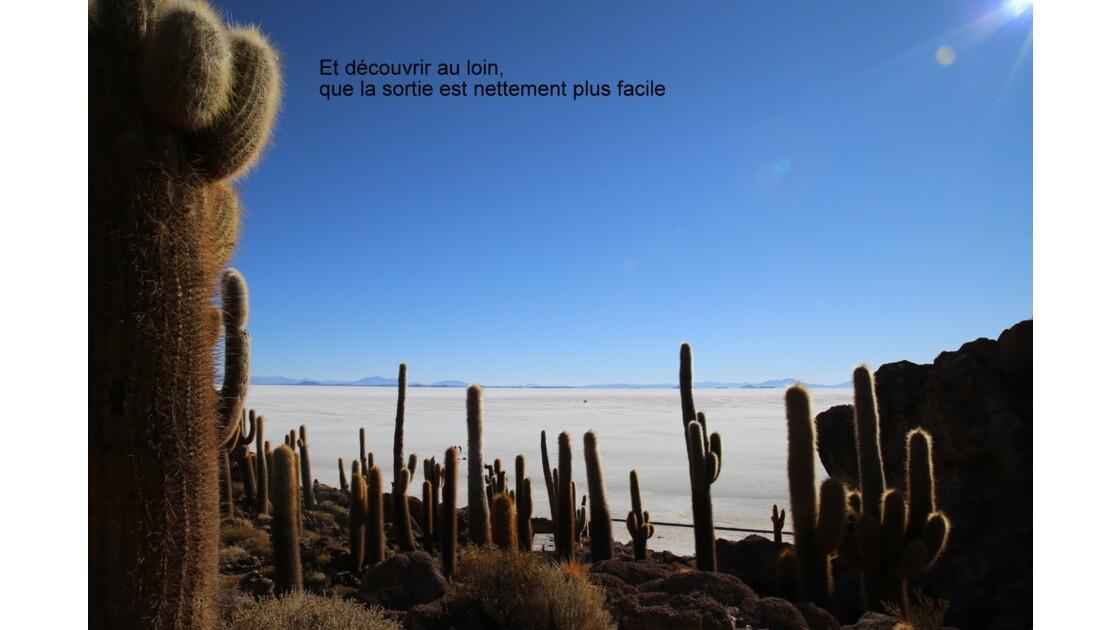 UYUNI le salar, l'île aux cactus
