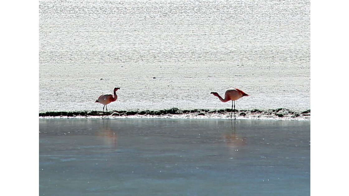 UYUNI Lagune 2