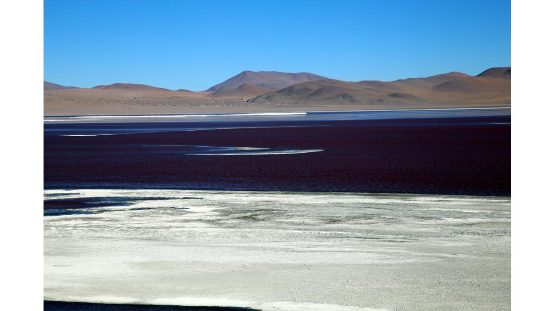 UYUNI  Laguna Colorada