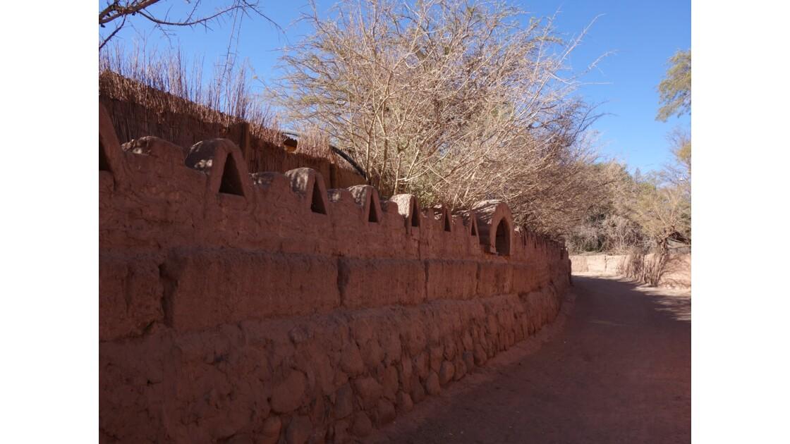 Arbres et murs