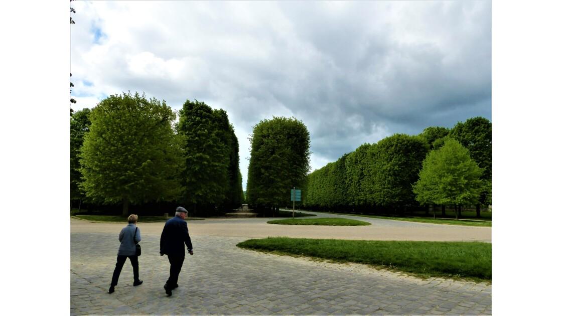 Versailles en perspective