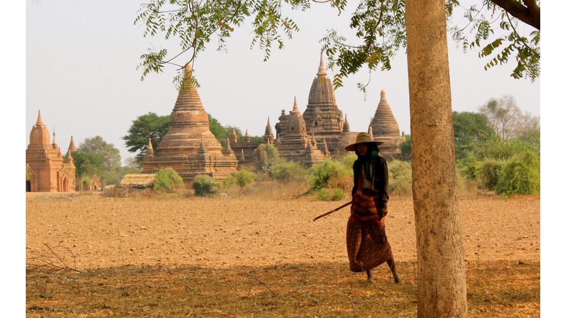 Bagan, Myanmar 2013