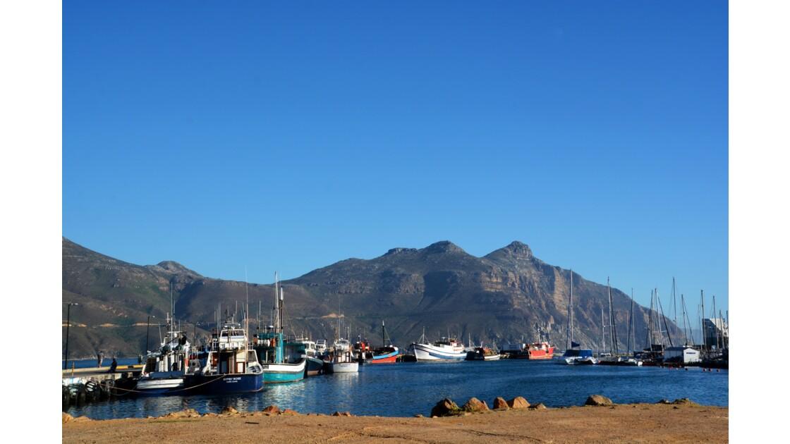 Hout bay région du Cap