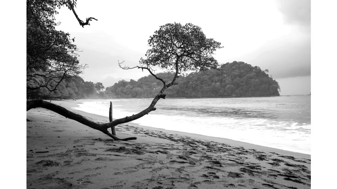 Sur la plage de Manuel Antonio - Costa Rica