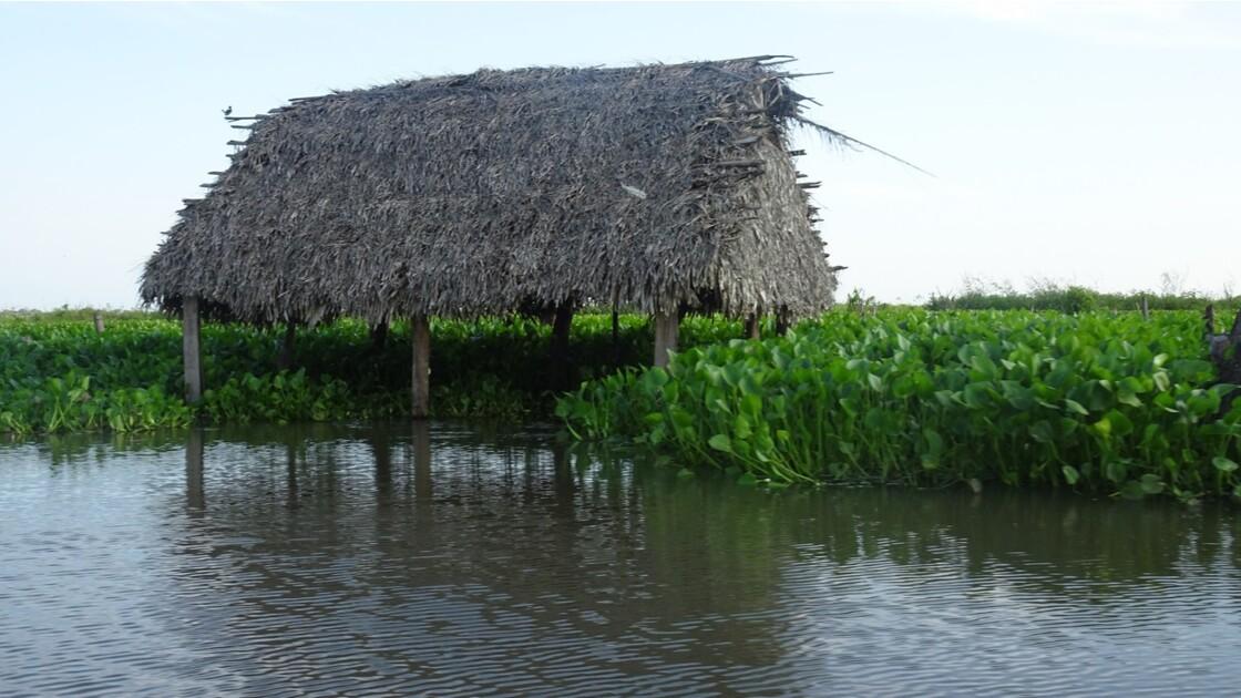 Colombie Mompox Sur la lagune de Pijilos 7