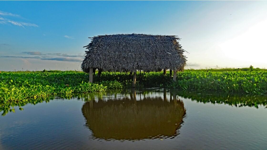 Colombie Mompox Sur la lagune de Pijilos 12