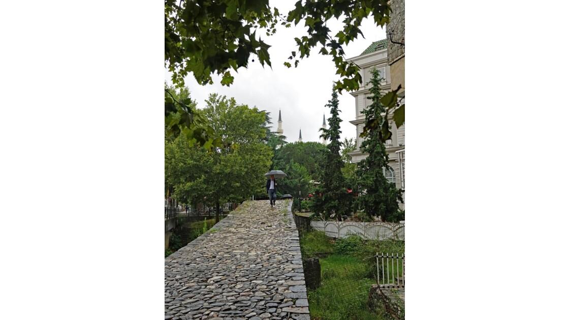 Albanie Tirana Le Pont des Tanneurs 3