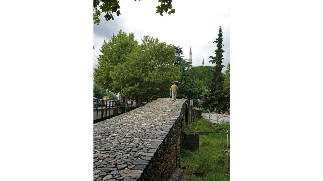 Albanie Tirana Le Pont des Tanneurs 4