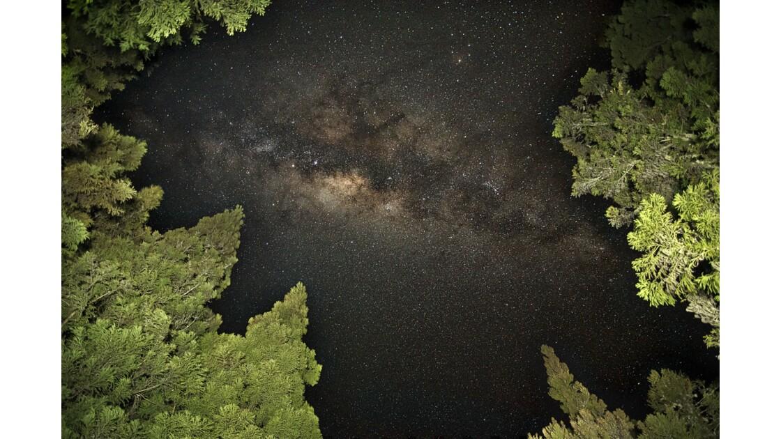 Voie Lactée – Plaine des Cafres – Île de la Réunion  © P A T R I C K • B A R R E T