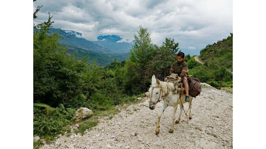 Albanie Le cavalier du Parc national Qafë-Shtamë 1