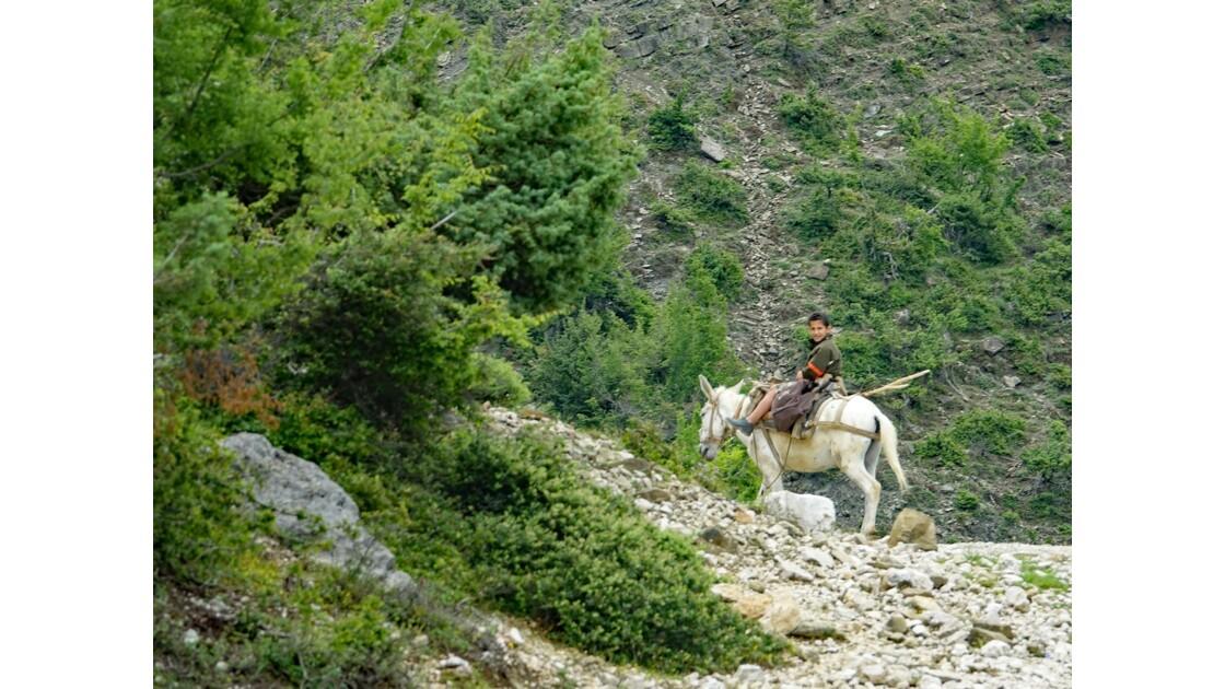Albanie Le cavalier du Parc national Qafë-Shtamë 2