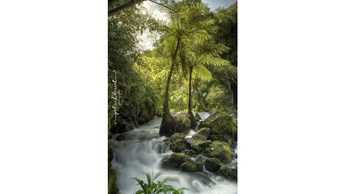Cascade de Trou Noir – Saint Joseph – Île de la Réunion  © P A T R I C K • B A R R E T