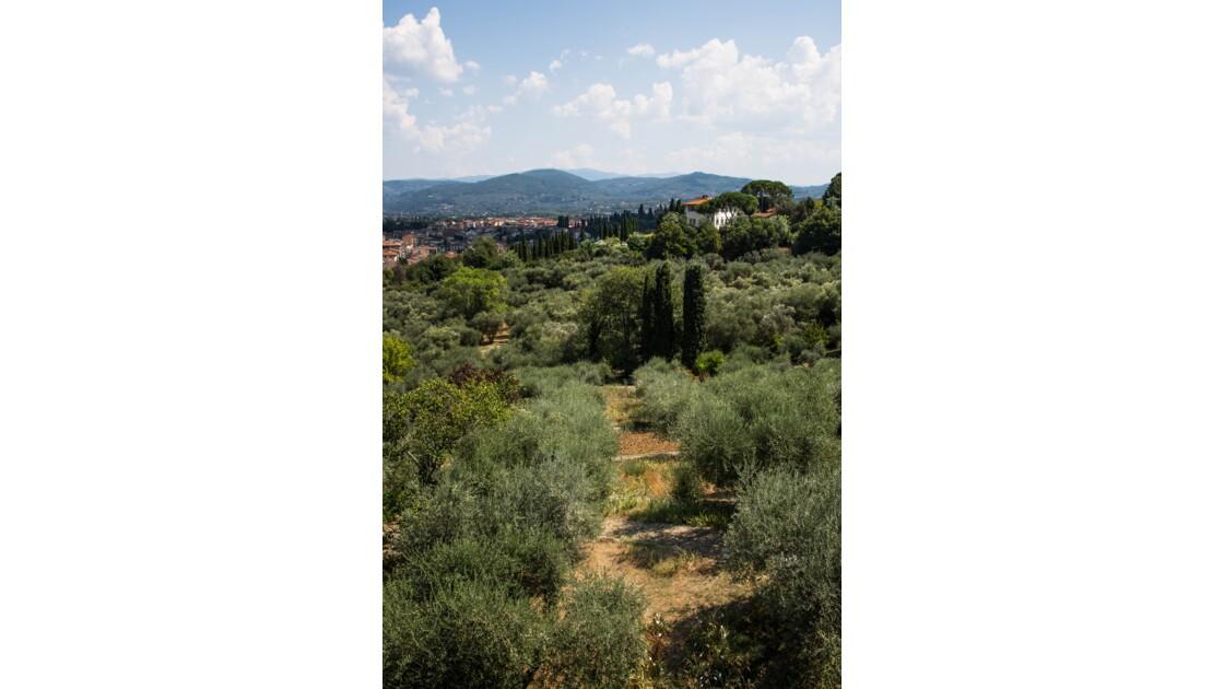 Vus sur les collines Toscanes