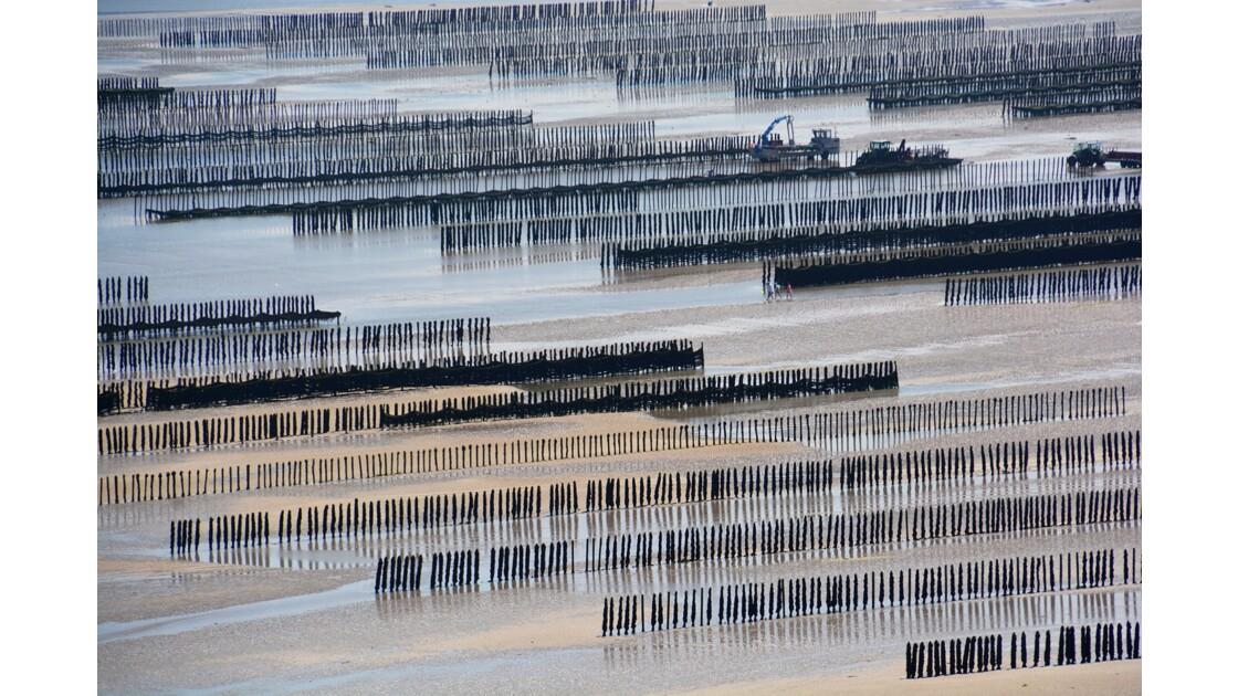 les moules de bouchot St Cast Bretagne