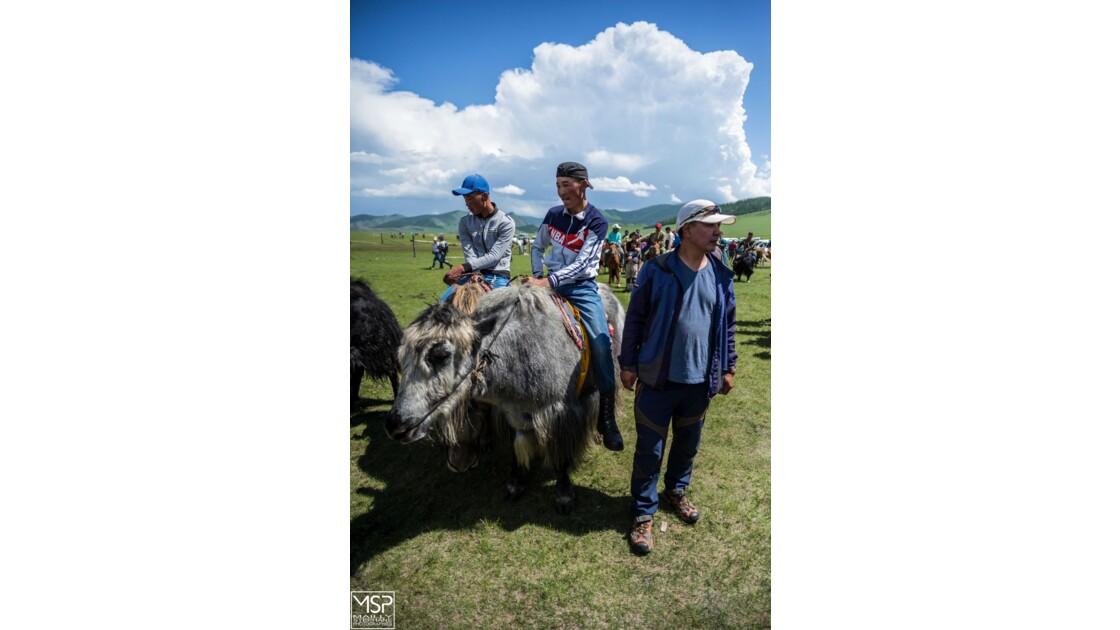 Mongolie - Le festival du yak